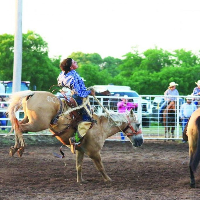 rodeo ranch bronc